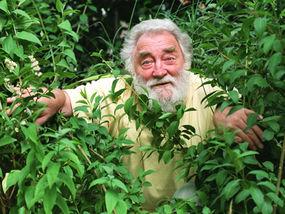 The late Professor David Bellamy